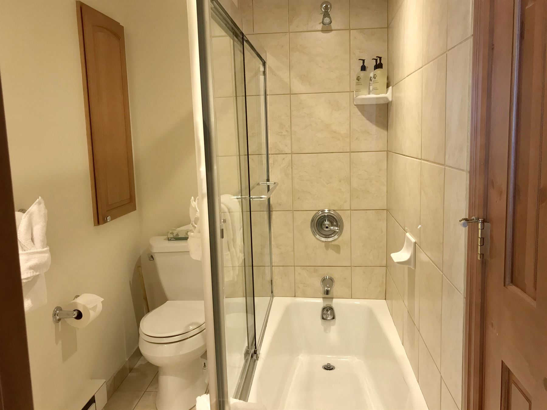 4BGold_guest bath_with tightly coordoned toilet with tub and shower combo next to it