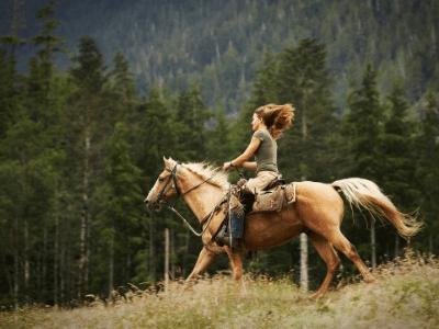 Horseback Riding Vail Colorado
