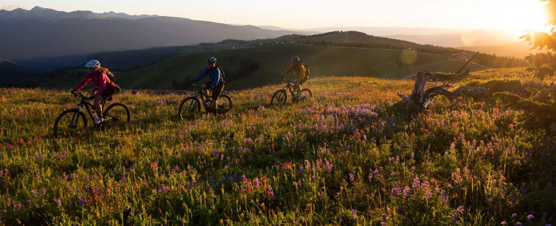 mountain biking vail co