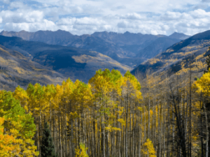 Vail CO in the Fall